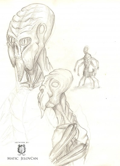 Image 12 397x550 - The Sketchbook