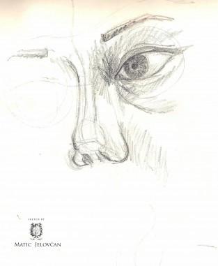 Image 16 313x381 - The Sketchbook