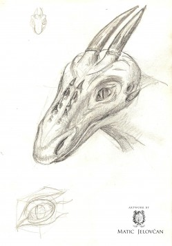 Image 21 249x356 - The Sketchbook
