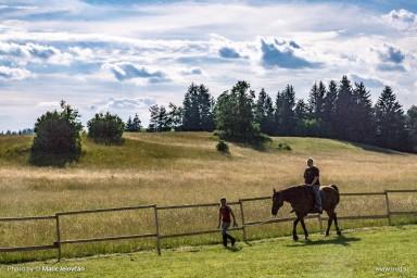 20150629 DSC00835 2 384x256 - HorseCamp 2015 — 1. teden