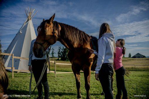 20150629 DSC00882 508x339 - HorseCamp 2015 — 1. teden