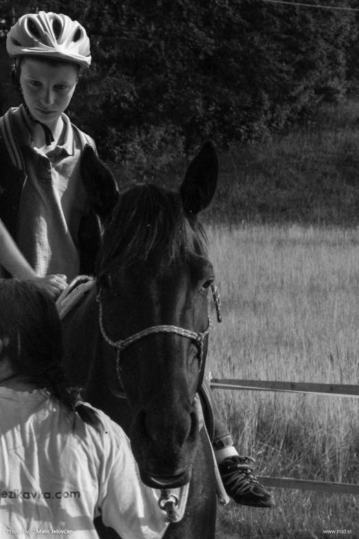 20150702 DSC00963 2 523x784 - HorseCamp 2015 — 1. teden