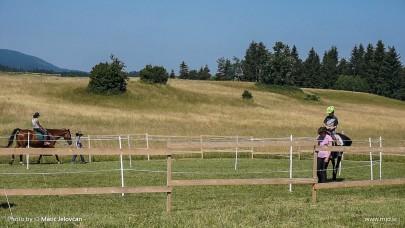 20150703 C0025T01 405x228 - HorseCamp 2015 — 1. teden