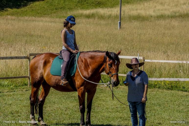 20150703 DSC01002 773x516 - HorseCamp 2015 — 1. teden