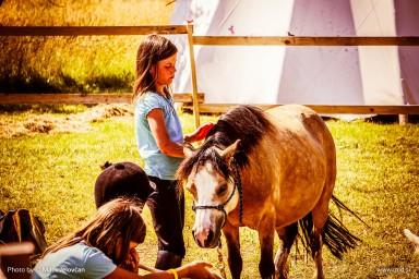 20150703 DSC01003 384x256 - HorseCamp 2015 — 1. teden