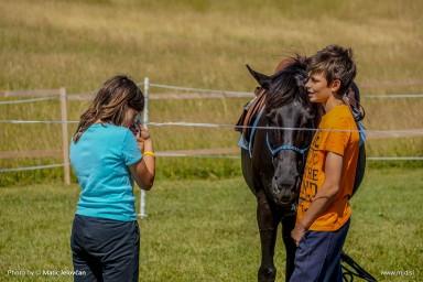 20150703 DSC01006 2 384x256 - HorseCamp 2015 — 1. teden