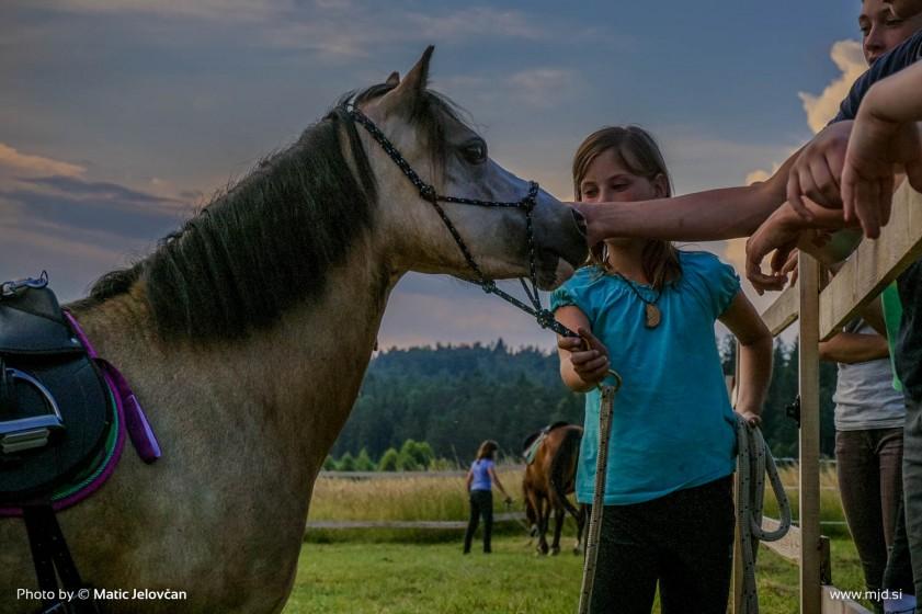 20150703 DSC01073 2 841x560 - HorseCamp 2015 — 1. teden