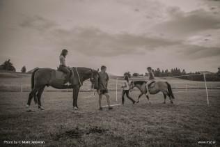 20150703 DSC01082 2 316x211 - HorseCamp 2015 — 1. teden