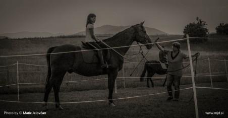 20150703 DSC01158 2 452x234 - HorseCamp 2015 — 1. teden