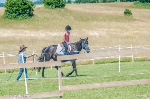 20150703  DSC9298 495x328 - HorseCamp 2015 — 1. teden