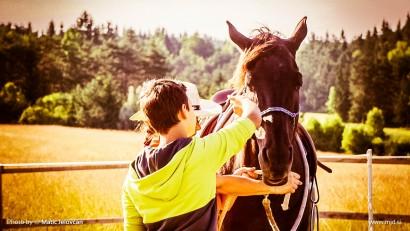 20150709 C0055T01 410x231 - HorseCamp 2015 — 2. teden