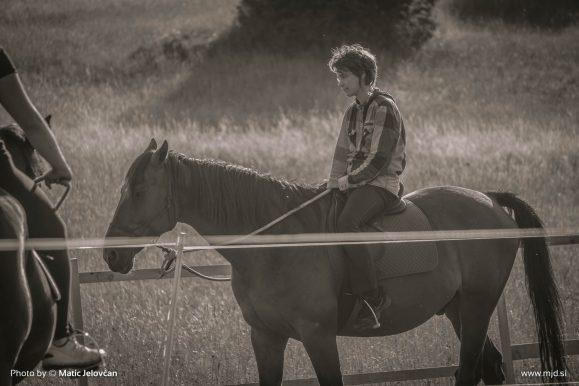 20150709 DSC01872 579x386 - HorseCamp 2015 — 2. teden