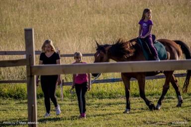 20150710 DSC01992 384x256 - HorseCamp 2015 — 2. teden
