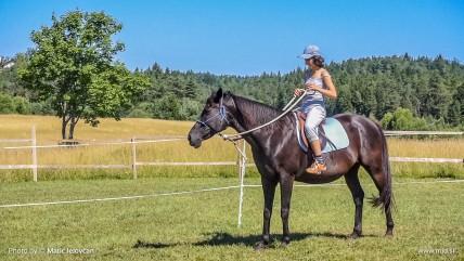 20150711 C0003 1 428x241 - HorseCamp 2015 — 2. teden
