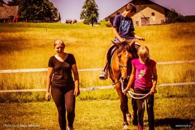 20150711 DSC02185 384x256 - HorseCamp 2015 — 2. teden