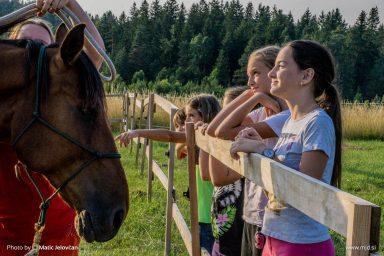 20150712 DSC02383 384x256 - HorseCamp 2015 — 3. teden