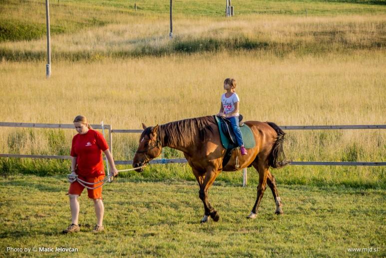 20150712 DSC02479 773x516 - HorseCamp 2015 — 3. teden