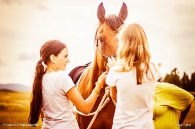 20150713 DSC02911 383x255 - HorseCamp 2015 — 3. teden