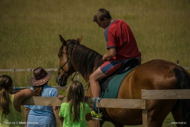 20150718 DSC03620 384x256 - HorseCamp 2015 — 3. teden