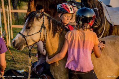 20150719 DSC03690 384x256 - HorseCamp 2015 — 4. teden