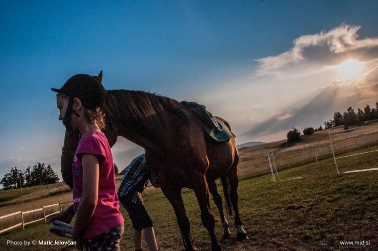 20150720  DSC0982 753x500 - HorseCamp 2015 — 4. teden