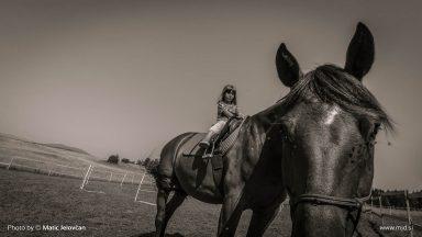 20150723 DSC00114 384x216 - HorseCamp 2015 — 4. teden