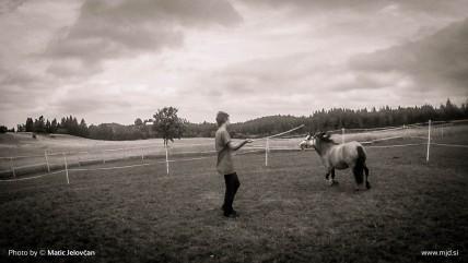 20150724 C0067T01 428x241 - HorseCamp 2015 — 4. teden