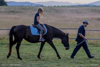 20150813 DSC06145 347x232 - HorseCamp 2015 — 5. teden