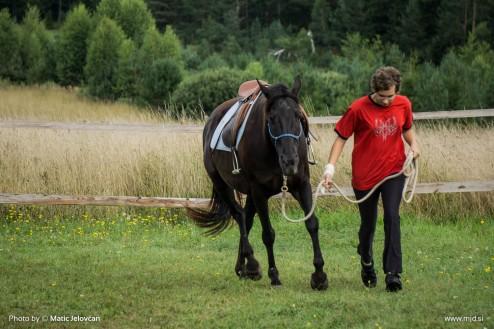 20150818 DSC06594 494x329 - HorseCamp 2015 — 6. teden