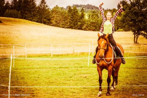 20150818 DSC06602 494x329 - HorseCamp 2015 — 6. teden