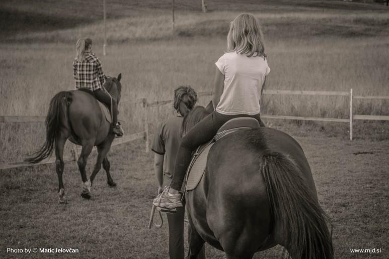 20150818 DSC06613 773x516 - HorseCamp 2015 — 6. teden