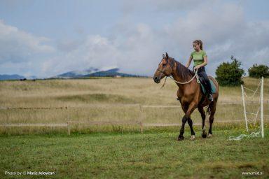 20150818 DSC06677 384x256 - HorseCamp 2015 — 6. teden