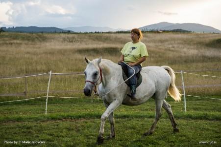 20150818 DSC06951 451x301 - HorseCamp 2015 — 6. teden