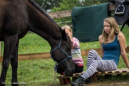 20150820 DSC07206 421x281 - HorseCamp 2015 — 6. teden