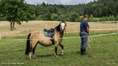 20150820 DSC07267 405x228 - HorseCamp 2015 — 6. teden