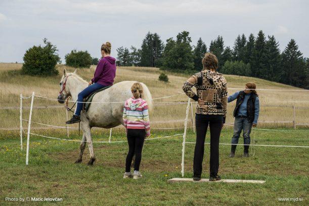 20150821 DSC07564 611x408 - HorseCamp 2015 — 6. teden