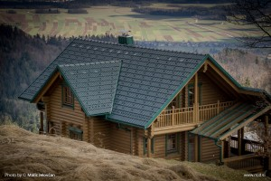 20160224 DSC07130 300x200 - The Log House