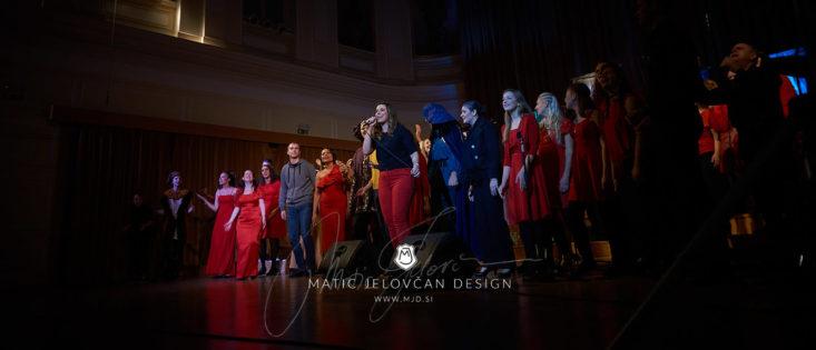 2017 10 29 22.02.12DSC09969 0 WebWM 733x315 - Gift of the Heart 2017, Ljubljana