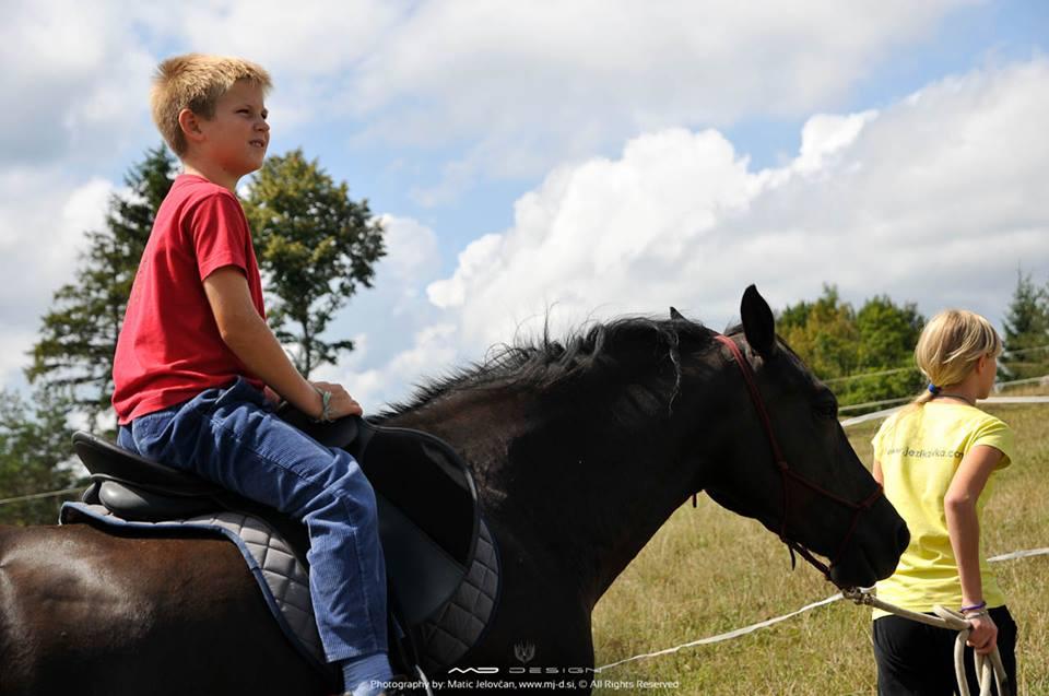 Jezikavka's English Camp with horses
