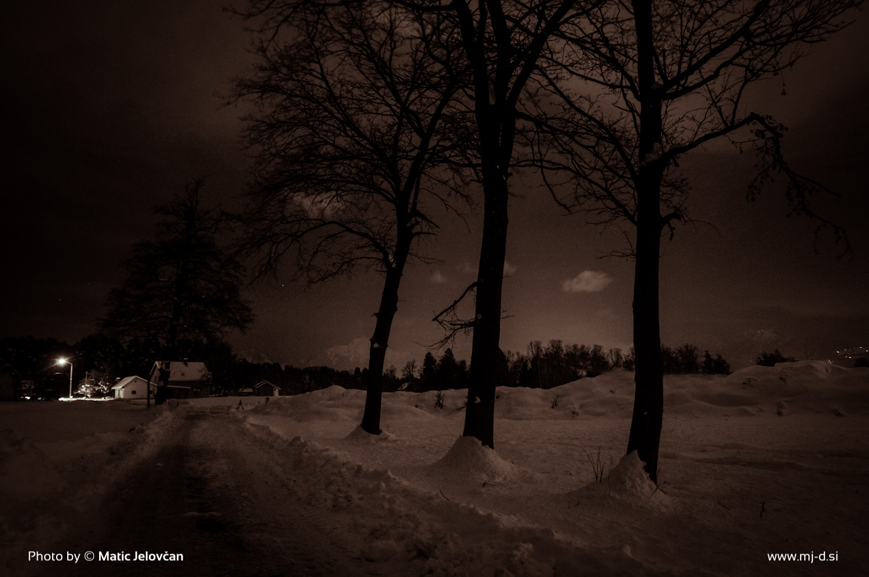 Chilling Winter Night