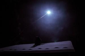 DSC8267 300x199 - A falsh-rocket looking like a falling star