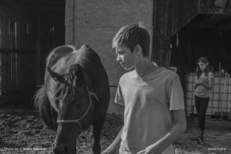20150629 DSC00826 773x516 - HorseCamp 2015 — 1. teden