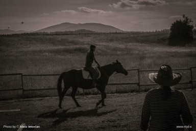 20150629 DSC00838 384x256 - HorseCamp 2015 — 1. teden
