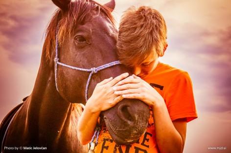 20150703 DSC01087 2 472x314 - HorseCamp 2015 — 1. teden