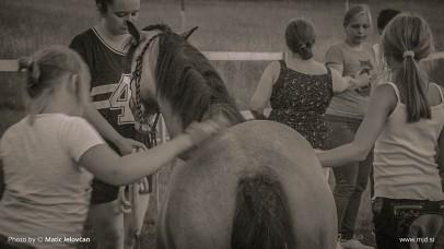 20150705 C0043T01 406x228 - HorseCamp 2015 — 2. teden