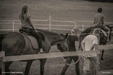 20150708 DSC01564 384x256 - HorseCamp 2015 — 2. teden