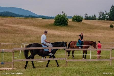 20150708  DSC9807 446x298 - HorseCamp 2015 — 2. teden