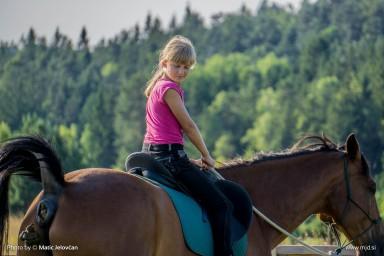 20150709 DSC01862 384x256 - HorseCamp 2015 — 2. teden