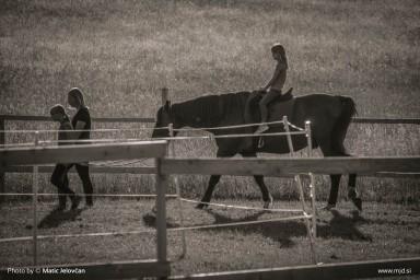 20150710 DSC01988 384x256 - HorseCamp 2015 — 2. teden