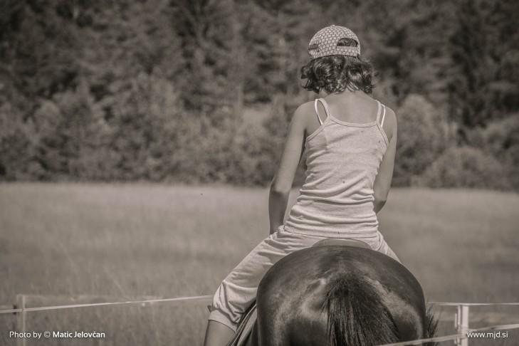 20150711 DSC02088 729x486 - HorseCamp 2015 — 2. teden